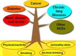 More than 9 million of all deaths attributed to NCDs occur before the age of 60.
